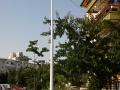Iluminat stradal cu LED - cartier Gradinari, Iasi 174927